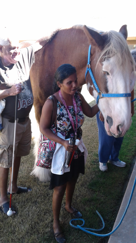 TSB member pets the  Clydesdale horse