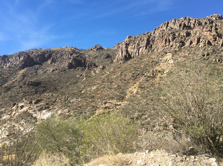 Looking down from the top of Sabino Canyon.